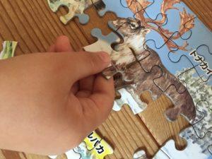 知育パズル巧緻性